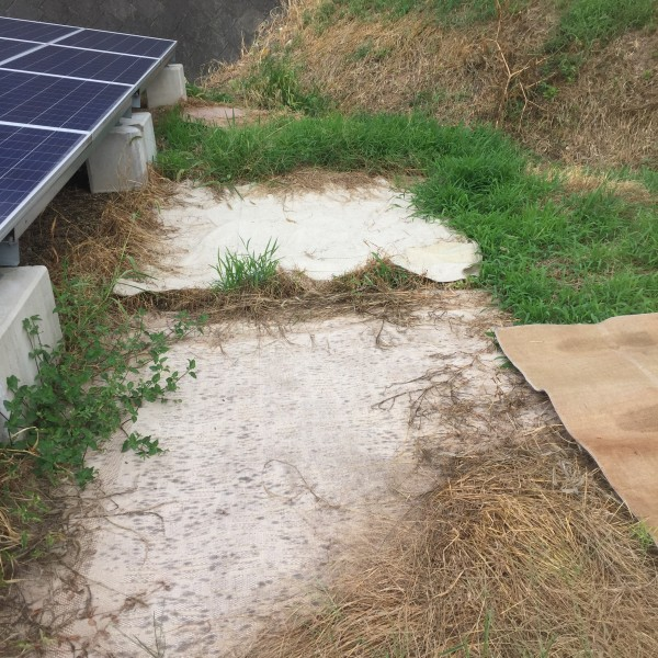 廃材利用で雑草対策