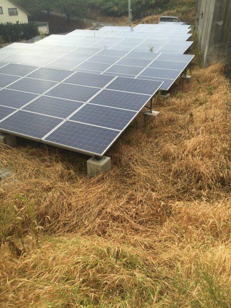 太陽光発電の除草剤に最適ラウンドアップマックスロード 5L